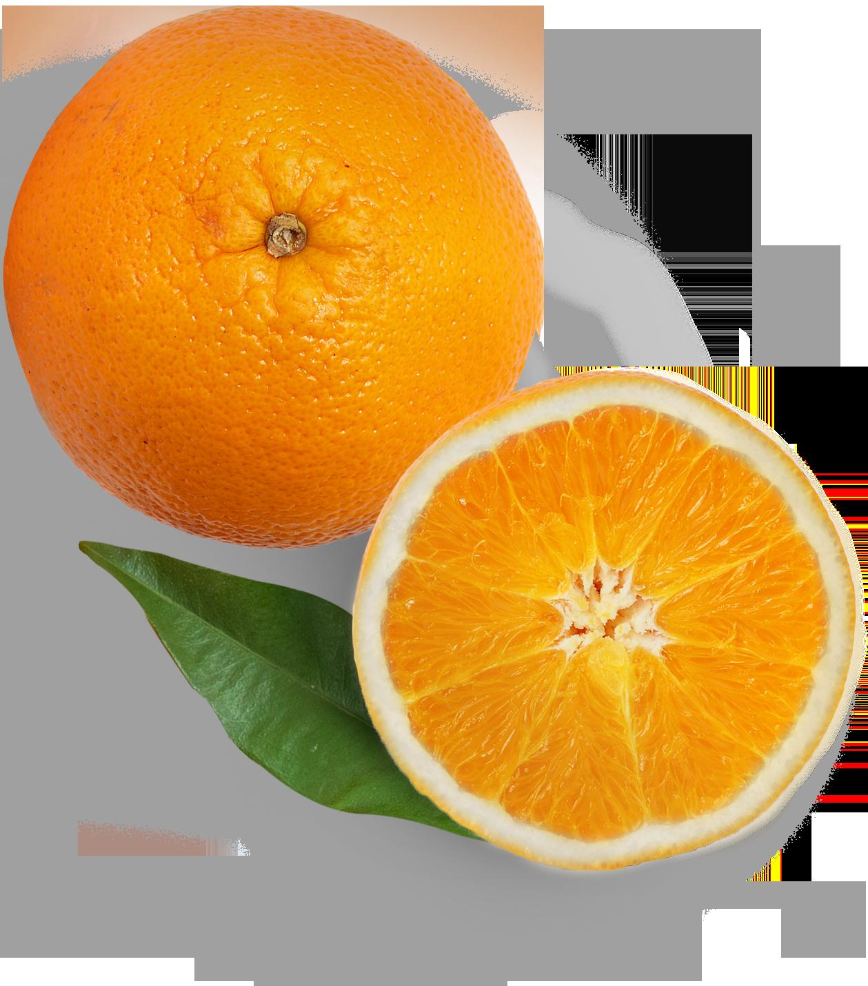 arance copia